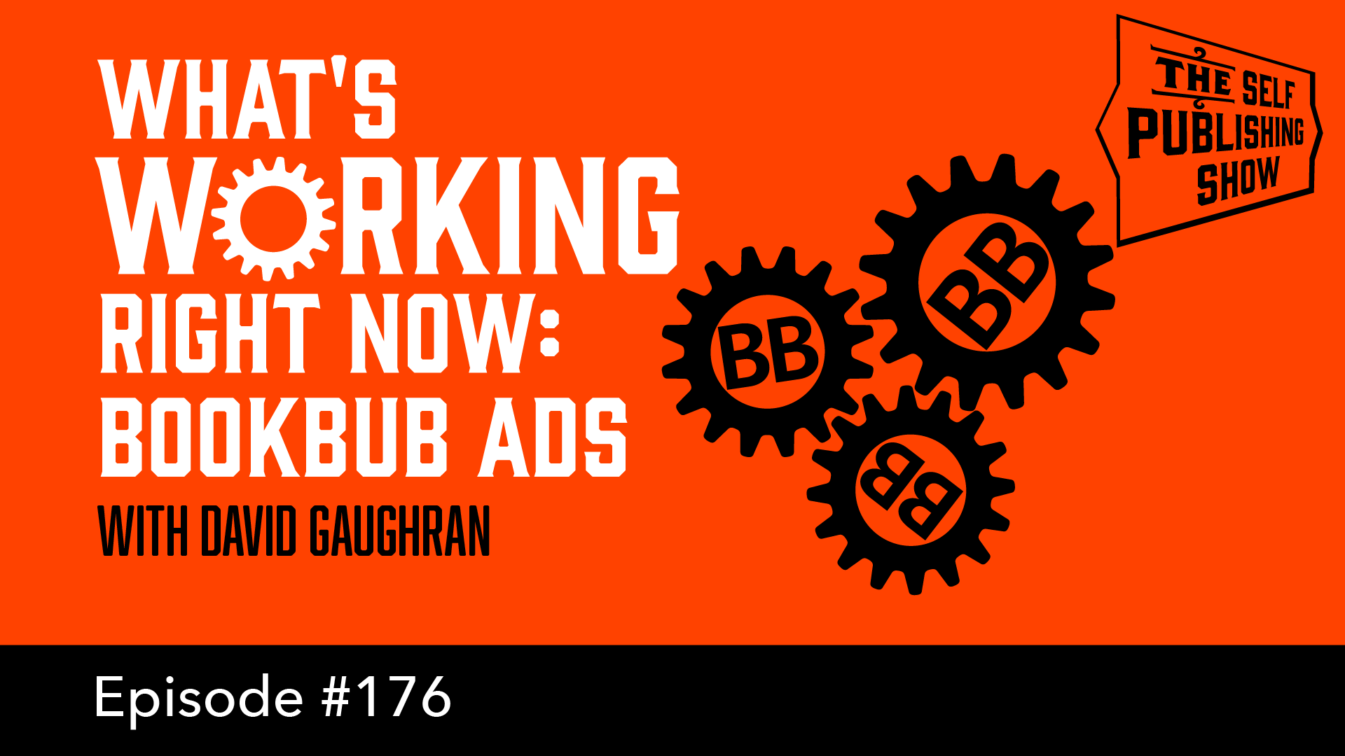 SPS-176: What's Working Right Now: BookBub Ads – with David Gaughran